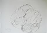 The Curl by Juliet Eardley, Drawing, Graphite on paper